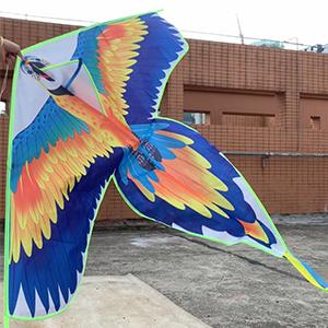 Colorful Bird Kite