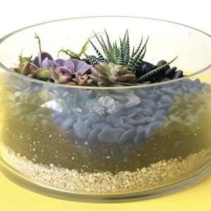 terrarium vermiculite