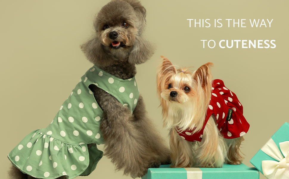 dog dresses dress for small dogs puppy doggie sundress shirts clothes pet apparel