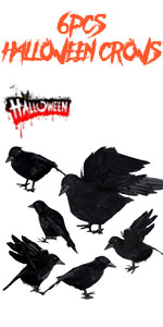 crow set 1