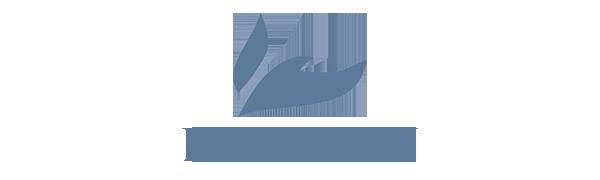 BLUECON logo