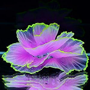 glow fish tank accessories