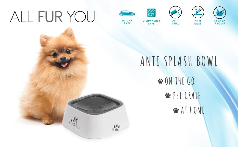 Anti Splash proof water bowl dog cat main pic