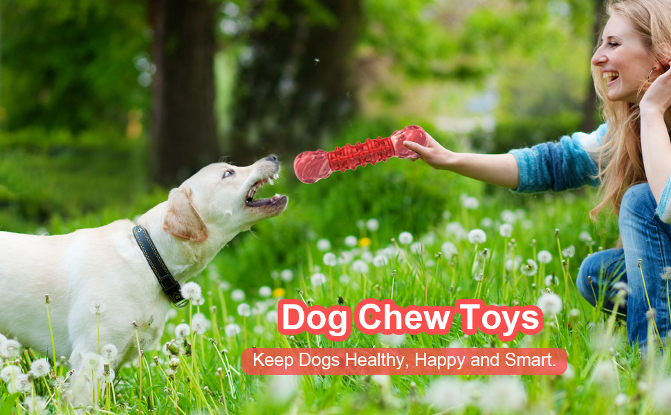 dog toys small dogs