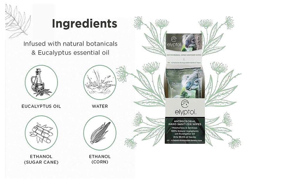 Elyptol Sanitizer Hand Wipes 10pack