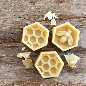 Beeswax is secreted by the four pairs of wax glands below the abdomen of a worker bee.