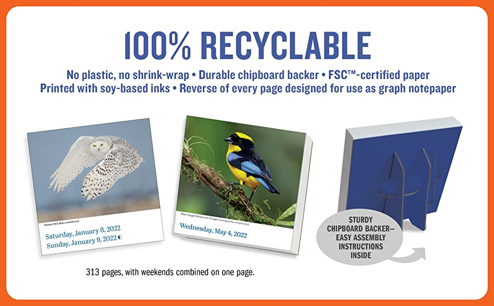 page a day calendar gift bird recyclable eco sustainable plastic free