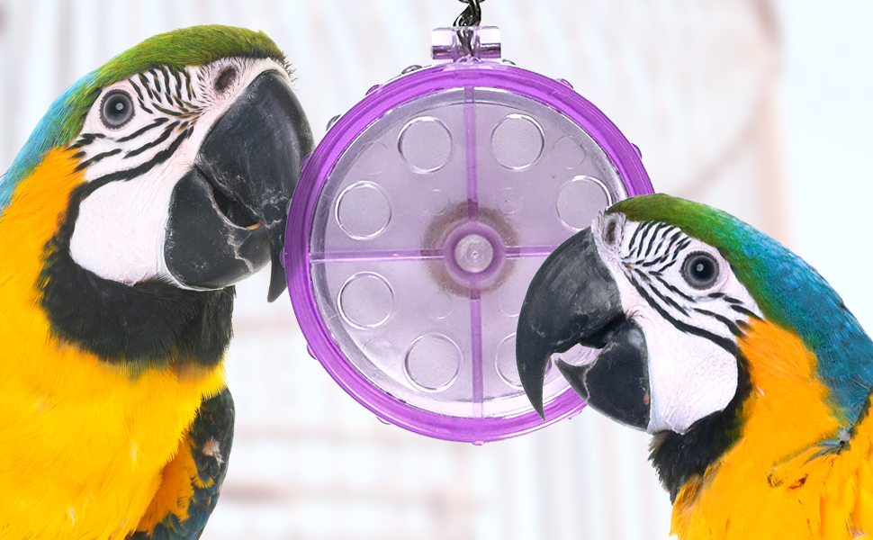 Perfect Treat Bird Cage Toys Safe Non-Toxic Easy Install Foraging Tough Plastic Pet Toy Accessories