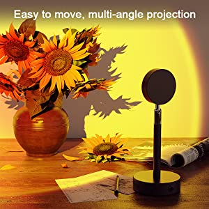 Easy to move, multi-angle projection