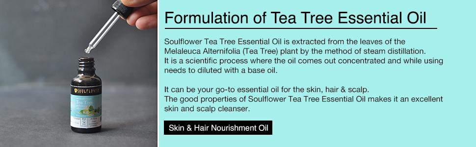 tea tree essential oil for scalp