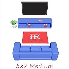5x7 Livingroom Rugs