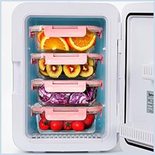 mini fridge for food