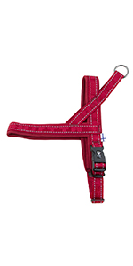 casual dog harness