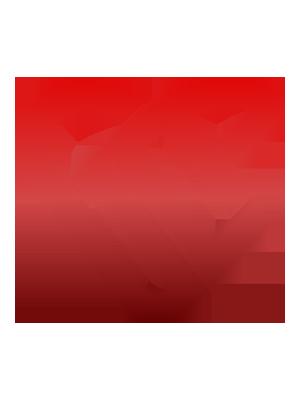 GameCarePro | Logo