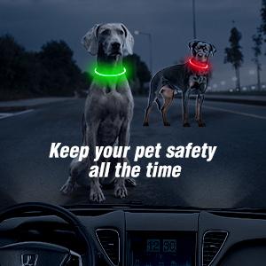 BSEEN LED Dog Collar