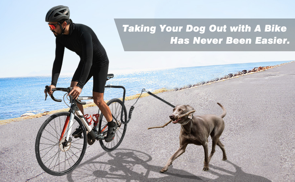 Taking your dog for travelling with a bike has never been easier.