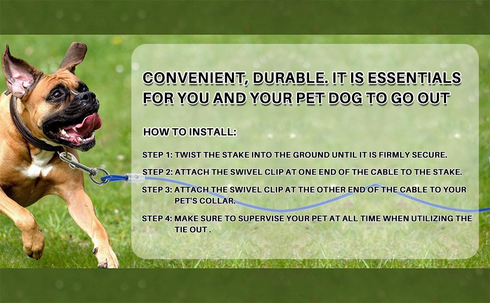 dog yard stake
