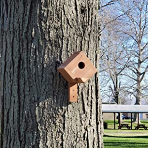 Wakefield Post Mount Birdhouse hanging from a tree