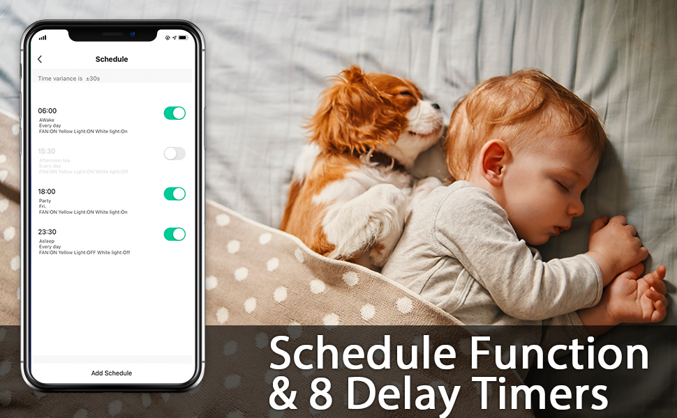 Schedule & Delay Function