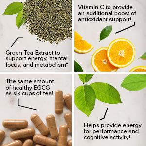 green tea extract vitamin c egcg ingredients
