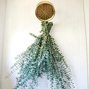 hang eucalyptus in your shower
