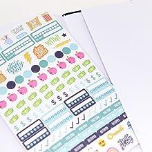 bloom undated monthly budget planner stickers pocket
