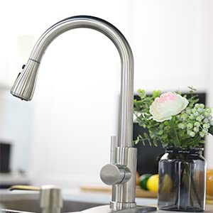 Kitchen Faucet with Pull Down Sprayer