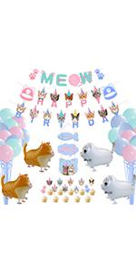 cat party decoraiton