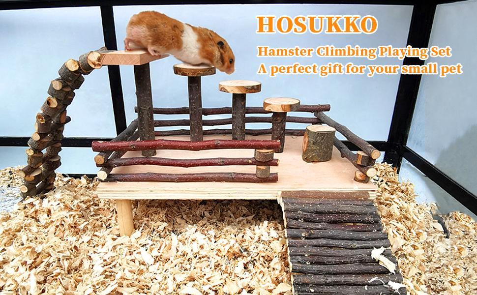 hamster climbing set