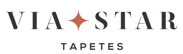 ViaStar Logo 680px 180px