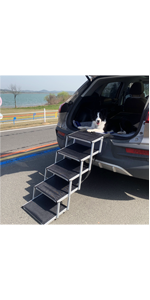 alum dog ramp