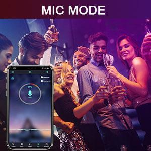 mic mode