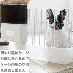 小型犬自動給餌器