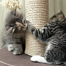 DIY krabpaal voor katten