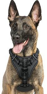 rabbitgoo Dog Harness No Pull, Adjustable Dog Walking Harness with 2 Metal Clips