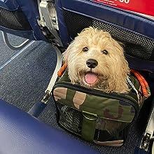 Airline Compliant Pet Carrier