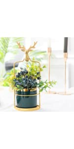 Succulent pots with Metal Holder