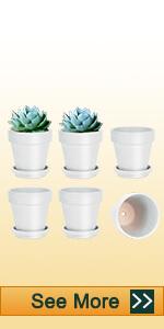 6pcs 5 inch white clay pots