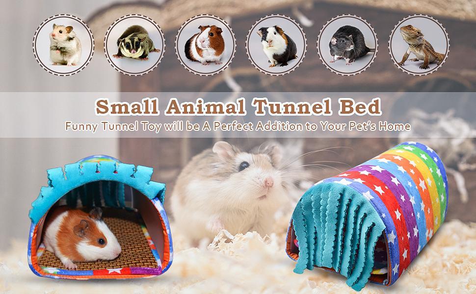 guineapig tunnel