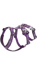 B07T153W3J Purple Comp Chart