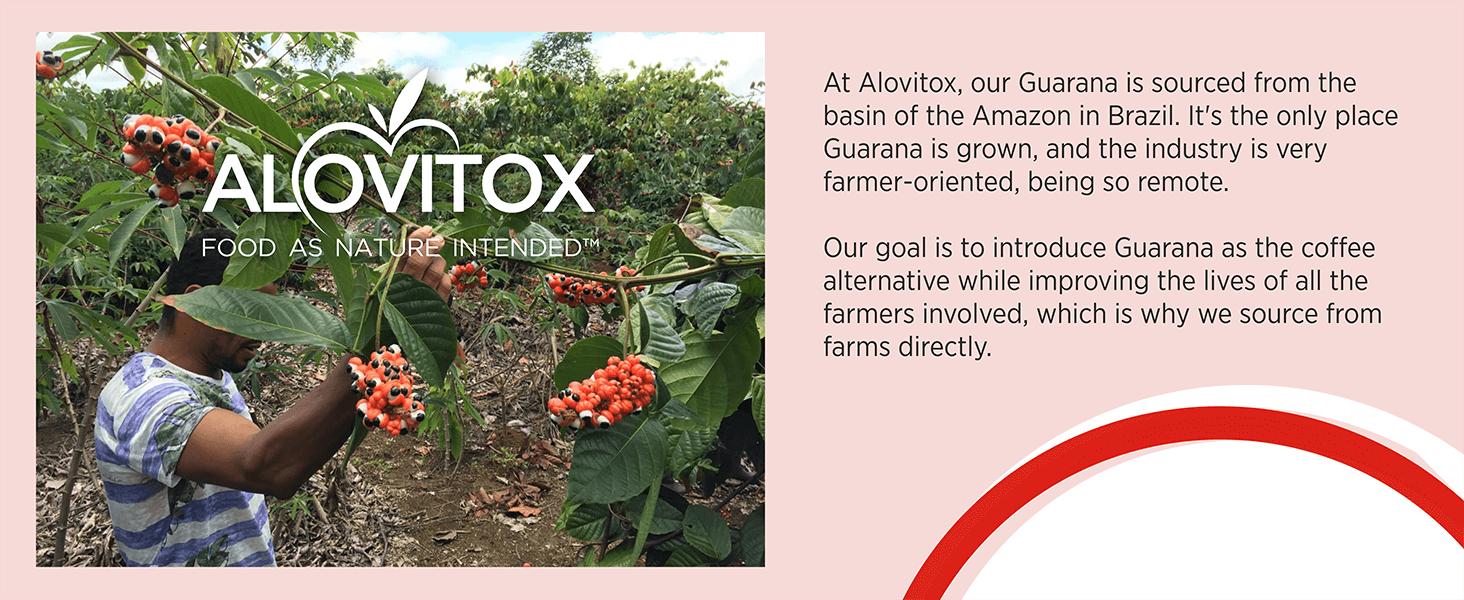 About Alovitox's Gaurana Powder