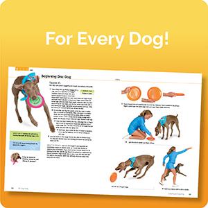 Tricks for every dog
