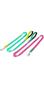 Color Block Dog Leash 2 Pack