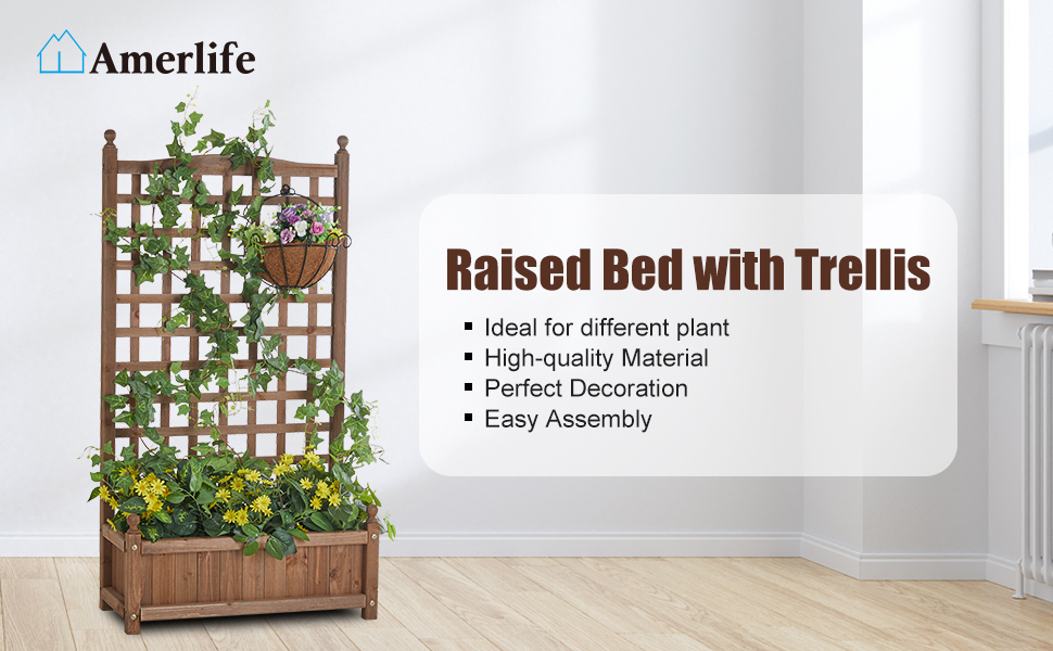 raised bed with trelli