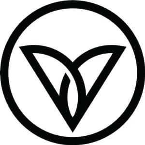 Venice Design Logo