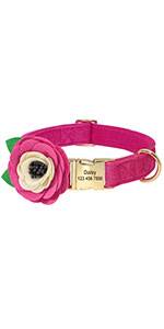 Personalized Girl Dog Collars
