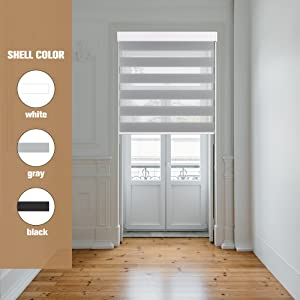 Shell color