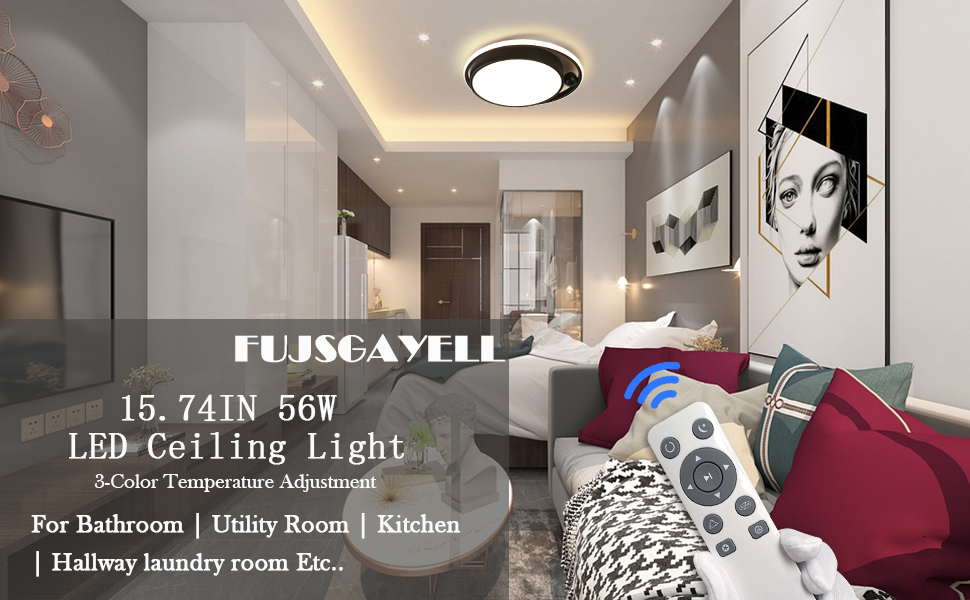 Dimmable Remote Control LED Bedroom Ceiling Light Guest Room Dining Room Balcony Cloakroom Corridor