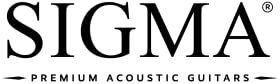 aacoustic guitar acustic gutair travel gifts gibson acoustic intermediate donner guitars