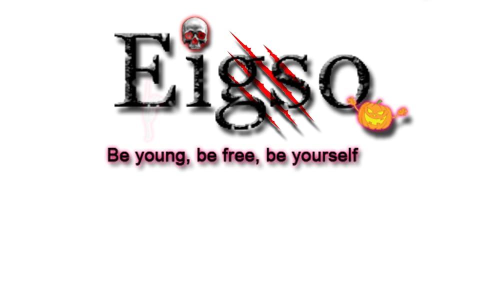 Eigso logo